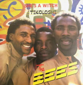 The Bees / She's A Witch - Tikoloshi