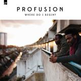 Profusion (K15 & Emeson) Where Do I Begin -LP-