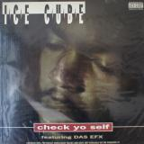 Ice Cube / Check Yo Self
